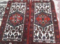 فرش دست بافت در شیپور-عکس کوچک