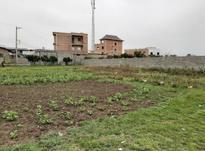 فروش زمین مسکونی 420 متر در ششصد دستگاه در شیپور-عکس کوچک