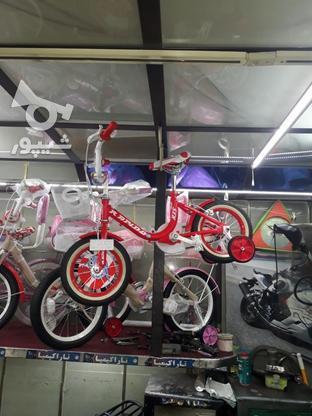 دوچرخه سایز 12 راپیدو درحد در گروه خرید و فروش ورزش فرهنگ فراغت در تهران در شیپور-عکس1