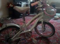دوچرخه سایز بیست در شیپور-عکس کوچک