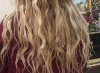 موی طبیعی بلوند در شیپور-عکس کوچک