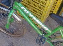دوچرخه16المپیا در شیپور-عکس کوچک
