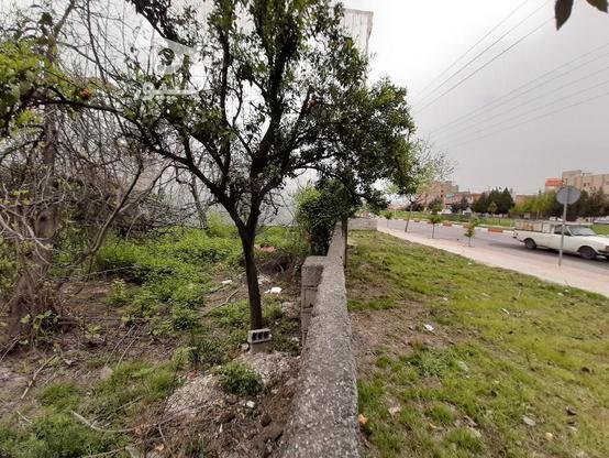 فروش زمین تجاری مسکونی 700 خ. داراب در گروه خرید و فروش املاک در مازندران در شیپور-عکس6