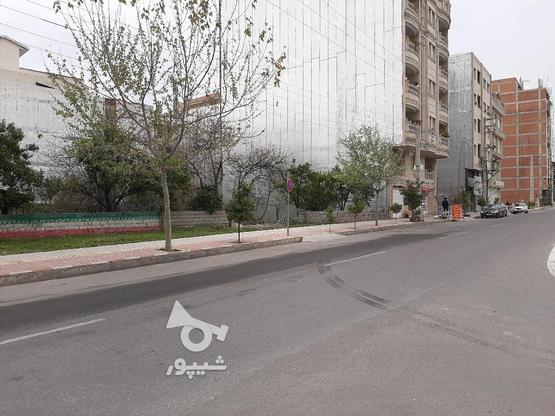 فروش زمین تجاری مسکونی 700 خ. داراب در گروه خرید و فروش املاک در مازندران در شیپور-عکس2
