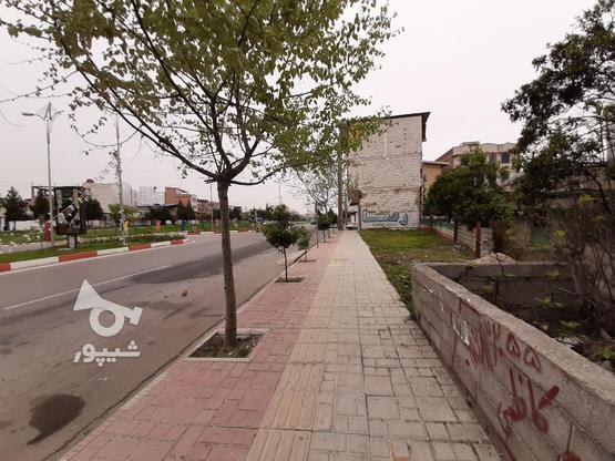فروش زمین تجاری مسکونی 700 خ. داراب در گروه خرید و فروش املاک در مازندران در شیپور-عکس7