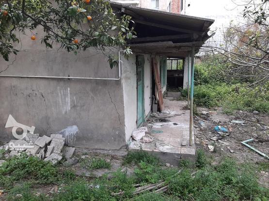 فروش زمین تجاری مسکونی 700 خ. داراب در گروه خرید و فروش املاک در مازندران در شیپور-عکس3