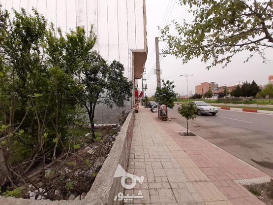 فروش زمین تجاری مسکونی 700 خ. داراب در گروه خرید و فروش املاک در مازندران در شیپور-عکس5