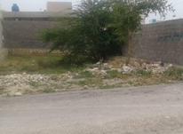 فروش زمین در کنگان شهرک معلم(اختر) در شیپور-عکس کوچک