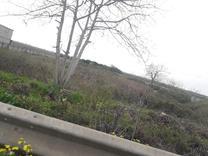 فروش زمین 4560 متر آکند در شیپور
