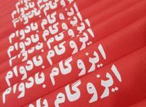چاپ و تبلیغات ترمه  در شیپور-عکس کوچک