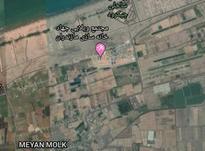 زمین مسکونی 100000 متر در بابلسر در شیپور-عکس کوچک