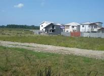 فروش زمین مسکونی 200 متر در نور در شیپور-عکس کوچک