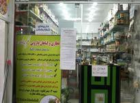 فروش مغازه 17 متر  در شیپور-عکس کوچک