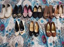 9 جفت کفش سایز 36   در شیپور-عکس کوچک