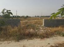 زمین باغ شهری  2000 متری در شیپور-عکس کوچک