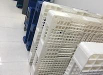تولید کننده پالت پلاستیکی در شیپور-عکس کوچک