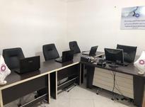 استخدام برنامه نویس و طراح وب  در شیپور-عکس کوچک