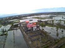 فروش زمین شهرکی300 متریدر چاف و چمخاله در شیپور