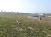 فروش زمین ۳۷۱ متری در رادیودریا در شیپور-عکس کوچک