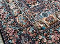 دریایی از فرش در شیپور-عکس کوچک