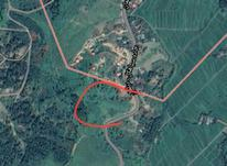 زمین متراژ 10000 در سیاهکل در شیپور-عکس کوچک