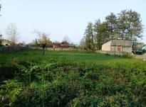 زمین مسکونی 2100 متر در رضوانشهر در شیپور-عکس کوچک