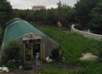 فروش زمین ۱۸۰۰ متر در حومه تنکابن با بر تجاری در شیپور-عکس کوچک