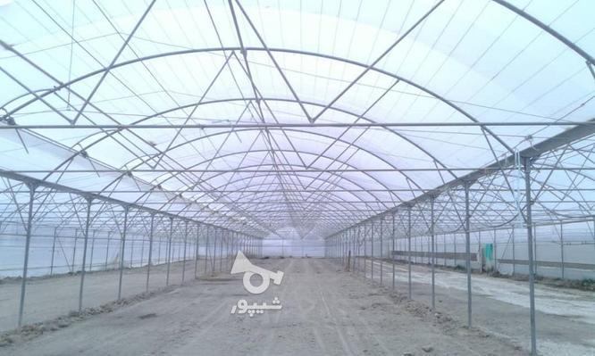 شرکت گلخانه سازان پارتاک ویهان گلشن  در گروه خرید و فروش خدمات و کسب و کار در اصفهان در شیپور-عکس3