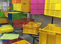 انواع جعبه پلاستیکی و سبد مواد نو درجه یک در شیپور-عکس کوچک