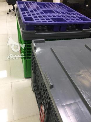باکس پالت پلاستیکی در گروه خرید و فروش خدمات و کسب و کار در تهران در شیپور-عکس1