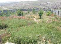 مجموعه زمین های خورین مهراباد ۵۰۰متری با امکانات در شیپور-عکس کوچک