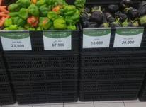 سبد پلاستیکی هایپری تره بار-سبد پلاستیکی میوه و سبزی  در شیپور-عکس کوچک
