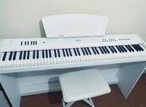 پیانو دیجیتال برگمولر p10 در شیپور-عکس کوچک