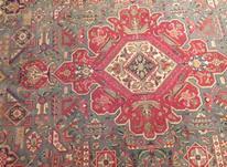 فرش دستبافت در شیپور-عکس کوچک
