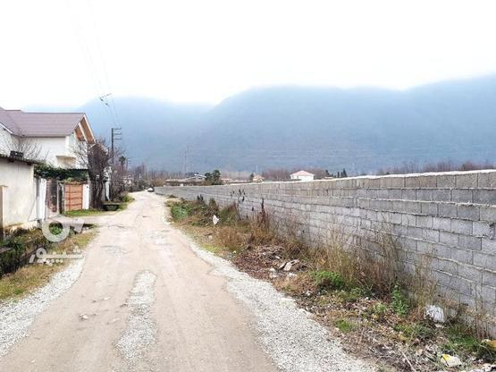 انارورزمین مسکونی240متری___درمنطقه ویلایی  در گروه خرید و فروش املاک در مازندران در شیپور-عکس1