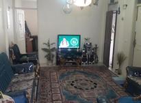 ۶۲متر خیابان آذربایجان خیابان قصرالدشت در شیپور-عکس کوچک