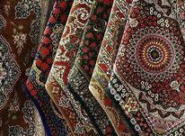 کارخانه قالیشویی و مبلشویی بانو در شیپور-عکس کوچک