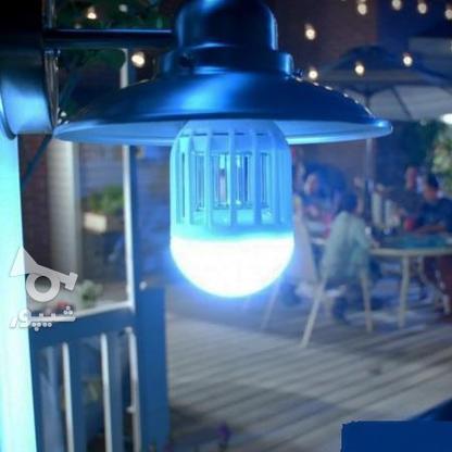 لامپ حشره کش برقی مدل زپ لایت  + ارسال به سراسر ایران  در گروه خرید و فروش لوازم خانگی در بوشهر در شیپور-عکس1