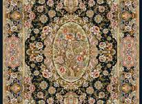 بافنده فرش در شیپور-عکس کوچک