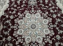 2تخته فرش 6 متری زرشکی و زیبا در شیپور-عکس کوچک