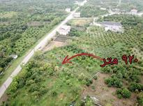 فروش زمین مسکونی 920 متر در قائم شهر در شیپور-عکس کوچک