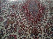 دوتا فرش 12 متری در شیپور-عکس کوچک