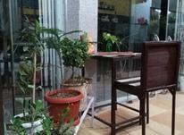 فریزر تاپینگ دار و میز صندلی وآب هویج گیر در شیپور-عکس کوچک