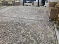تعداددوتخته فرش 12متری سلام درحدنو در شیپور-عکس کوچک