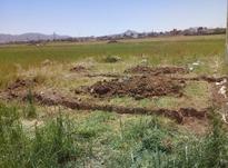 فروش فوری زمین شهرک نادی9×15به متراژ135متر در شیپور-عکس کوچک