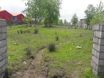 فروش زمین مسکونی 2000 متر در چاف و چمخاله در شیپور