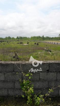 فروش زمین مسکونی 30000 متر در چاف و چمخاله در گروه خرید و فروش املاک در گیلان در شیپور-عکس1