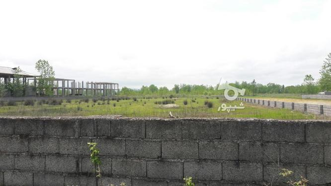 فروش زمین مسکونی 30000 متر در چاف و چمخاله در گروه خرید و فروش املاک در گیلان در شیپور-عکس10
