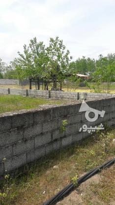 فروش زمین مسکونی 30000 متر در چاف و چمخاله در گروه خرید و فروش املاک در گیلان در شیپور-عکس3