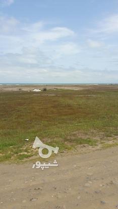 فروش زمین مسکونی 30000 متر در چاف و چمخاله در گروه خرید و فروش املاک در گیلان در شیپور-عکس6